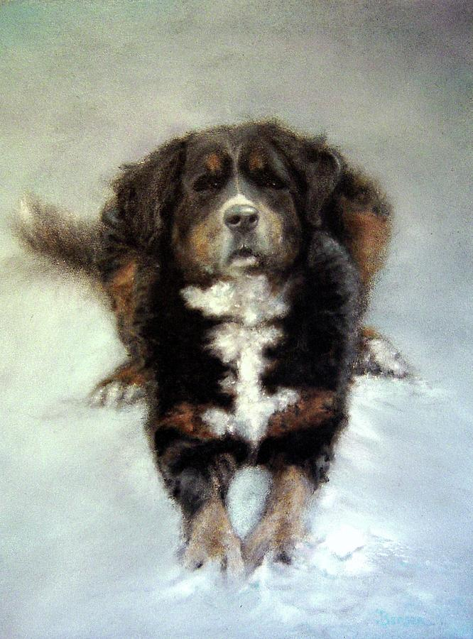 Bernese Mountain Dog Painting - Wanna Play? by James Berger