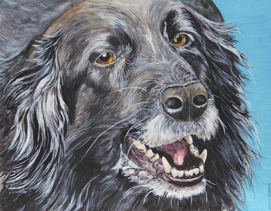 Border Collie Painting - Wanna Play Wanna Play by Helen Shideler