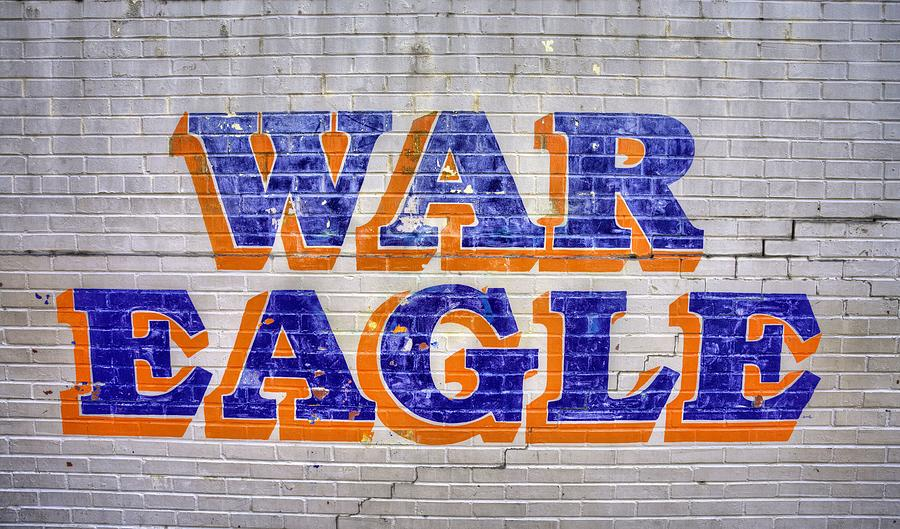 War Eagle Photograph - War Eagle by JC Findley