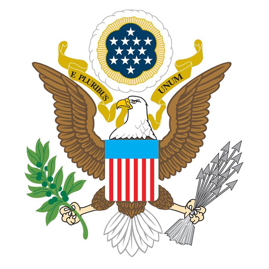 War Seal American Eagle Patriot Flag America Bald Eagle Usa