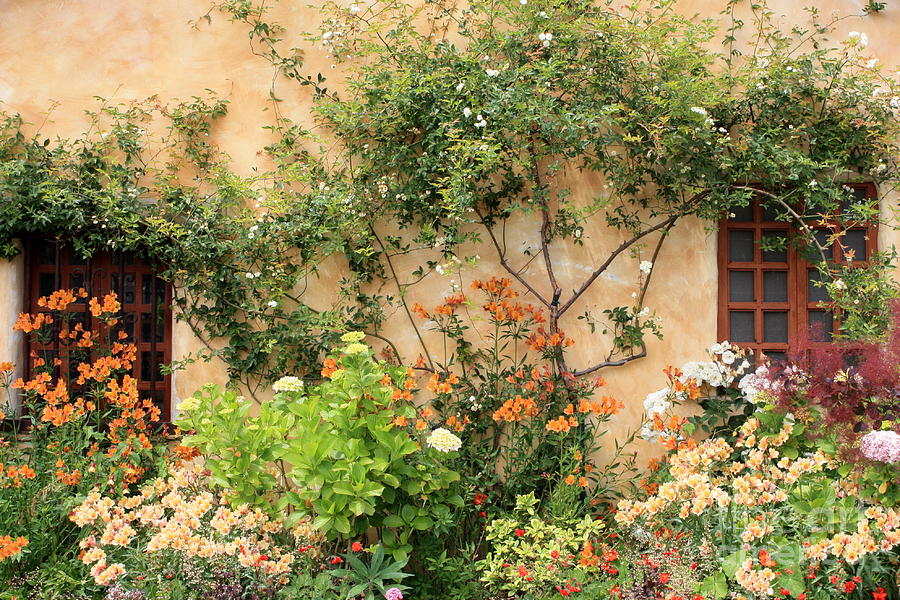 Carmel Mission Photograph - Warm Colors in Mission Garden by Carol Groenen