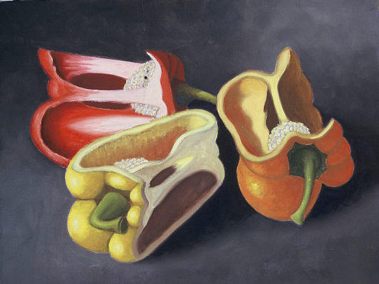 Still Life Painting - Warm Peppers by Bart  Dluhy