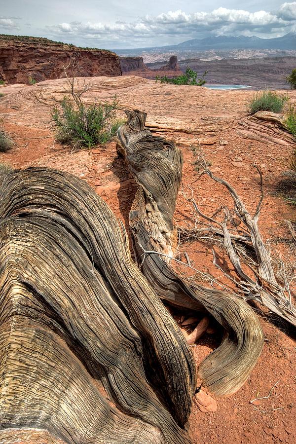 Landscape Photograph - Warped by Ryan Heffron