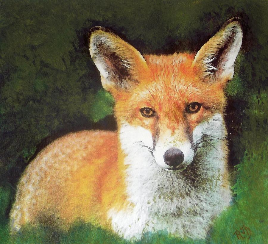 Wary Fox Painting