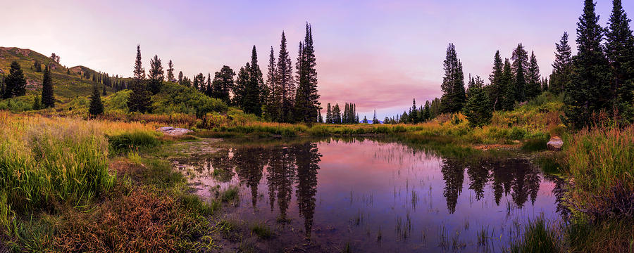 Wasatch Back Photograph - Wasatch Back by Chad Dutson