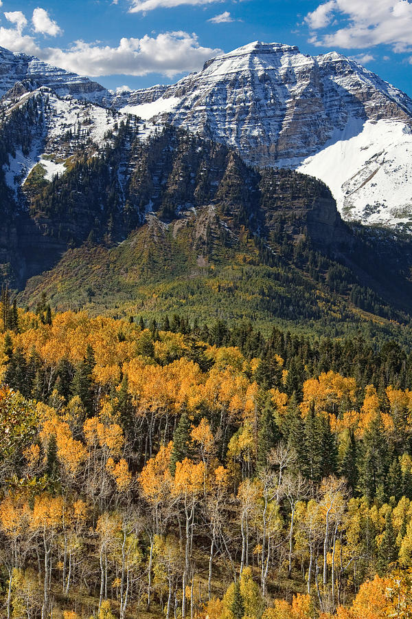 wasatch mountains autumn photograph by utah images