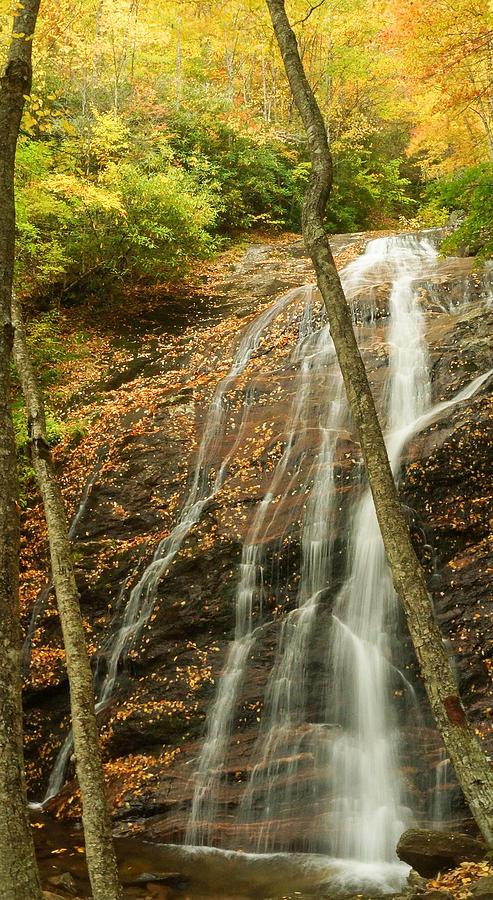 Wash Hollow Falls Nantahala National Forest Nc Photograph by Wayman Benton