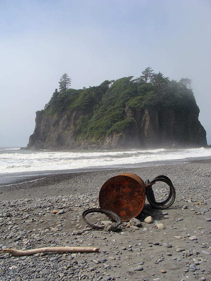 Nature Photograph - Washed Up by Ty Nichols