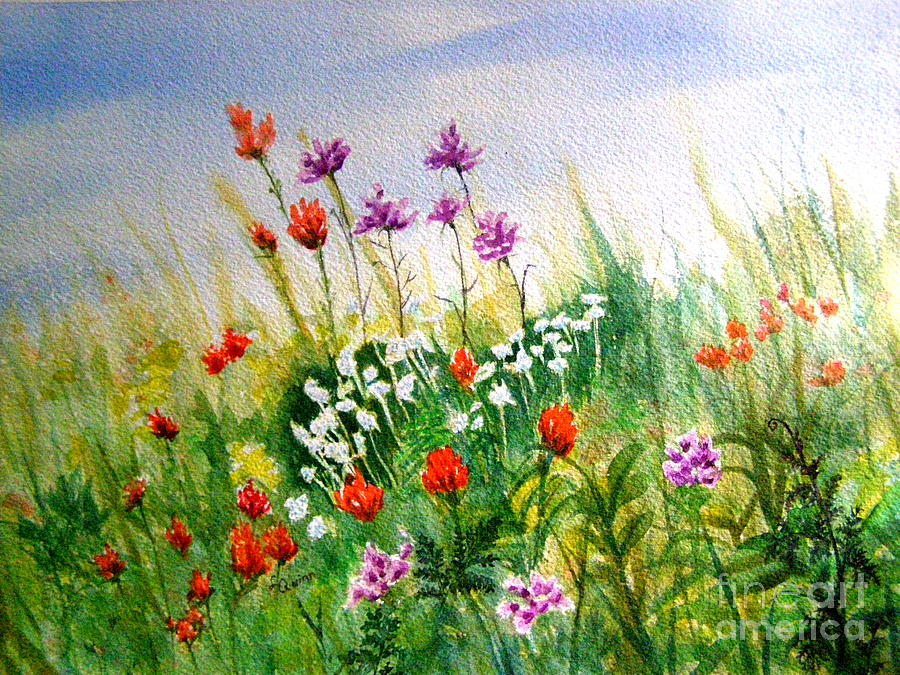 Washington Wildflowers by Lynn Quinn