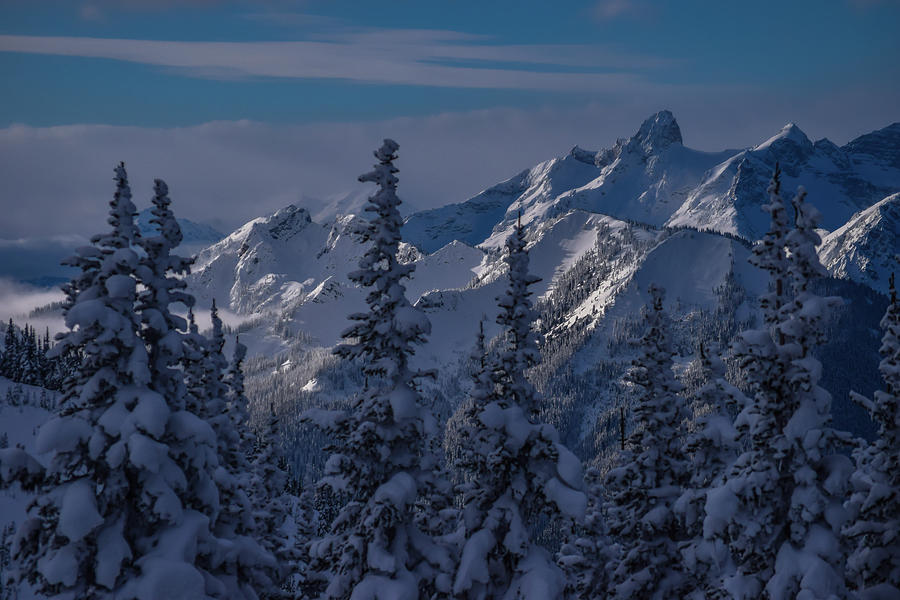 Washington Winter Scene by Richard Cheski