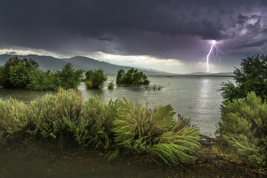 Washoe Lake Lightning by Janis Knight