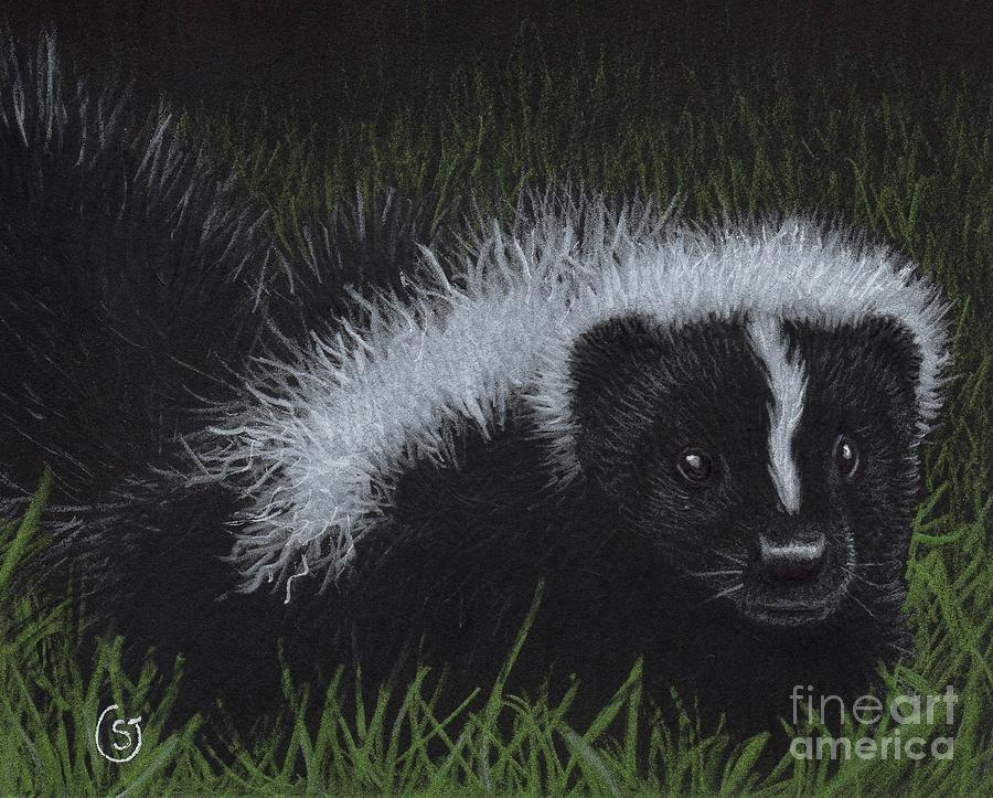 Skunk Painting - Watch Out - Theres A Baby Skunk In The Grass by Sherry Goeben