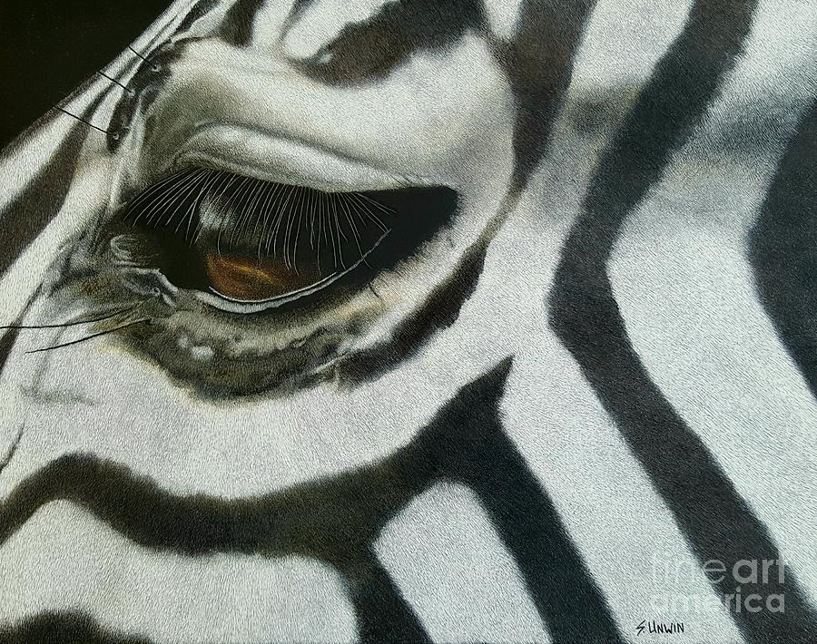 Animal Drawing - Watchful Eye  by Sheryl Unwin