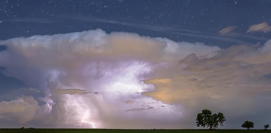 Watching Natures Show Panorama Photograph