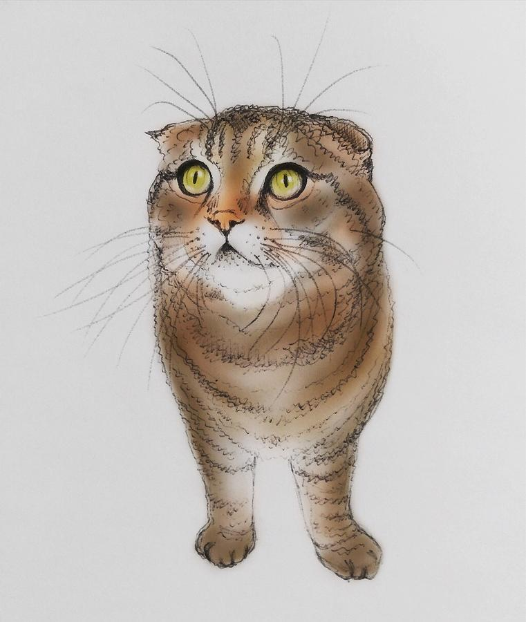 Nike Drawing - Watching The Snow Falling by Pookie Pet Portraits