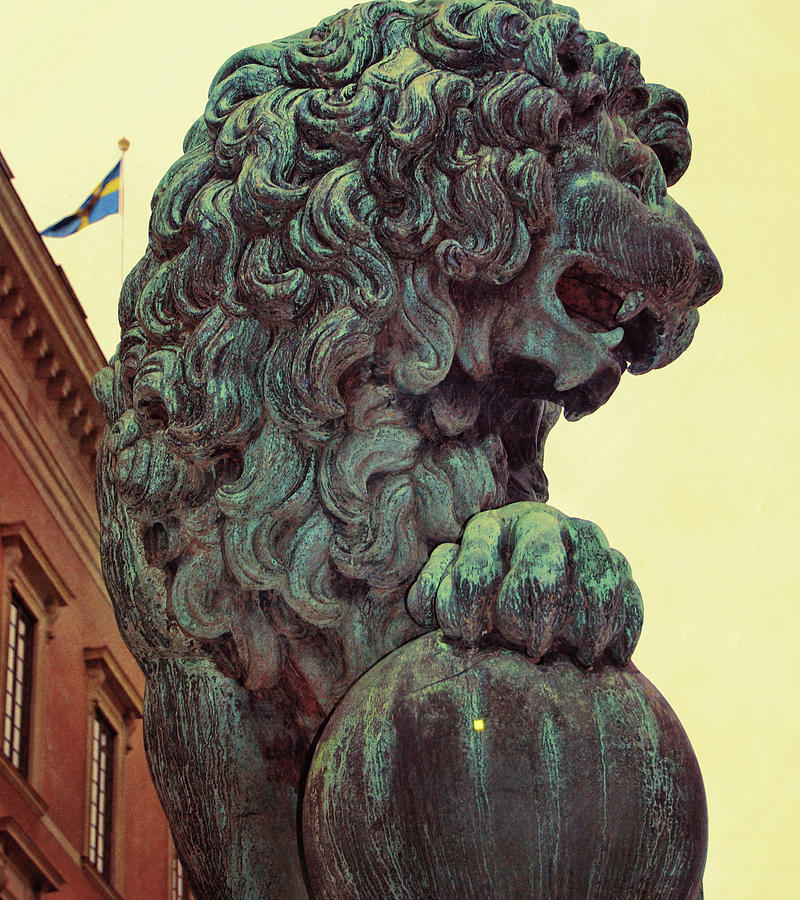 Lion Photograph - Watchman by JAMART Photography