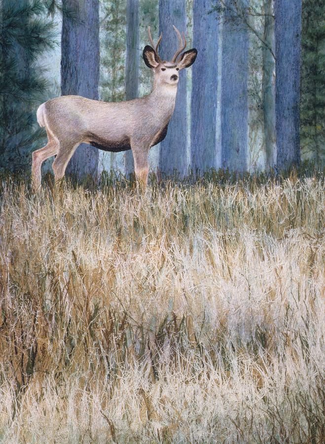 Deer Painting - Watchman by Janet Landrum