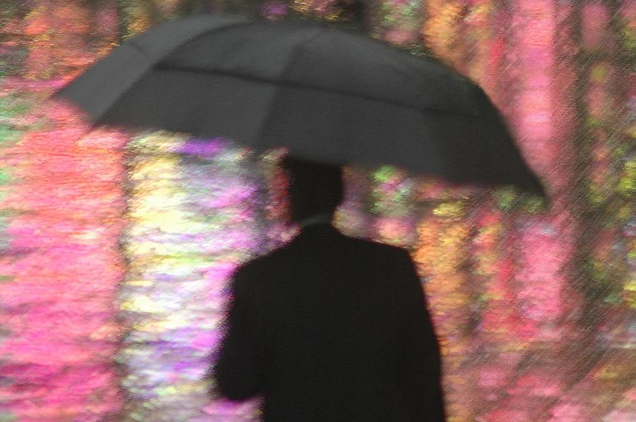 Rain Photograph - Water And Colors by Dan Holm