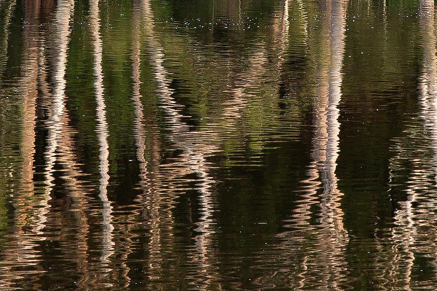 Landscape Photograph - Water Bumps by David Benson