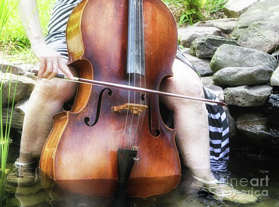 Cello Photograph - Water Cello  by Steven Digman