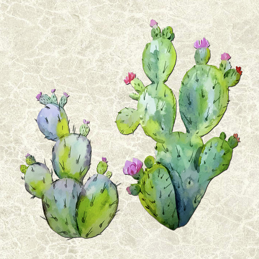 water color prickly pear cactus adobe background painting