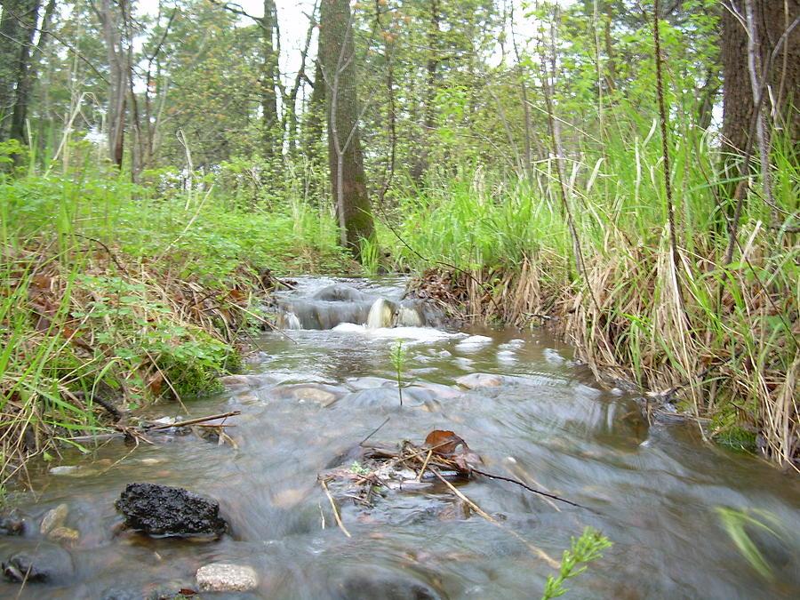 Water Photograph - Water Flows After A May Rain by Kent Lorentzen