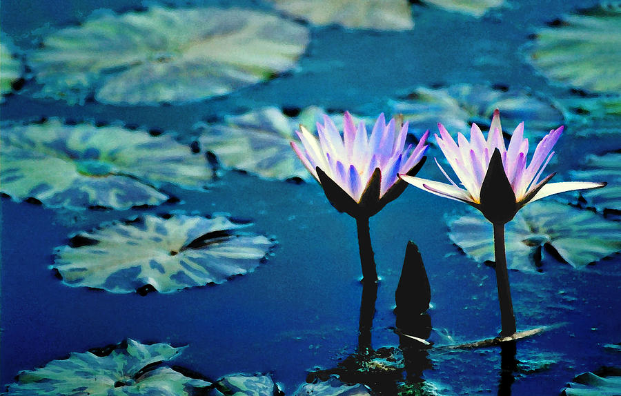Water Glow Photograph