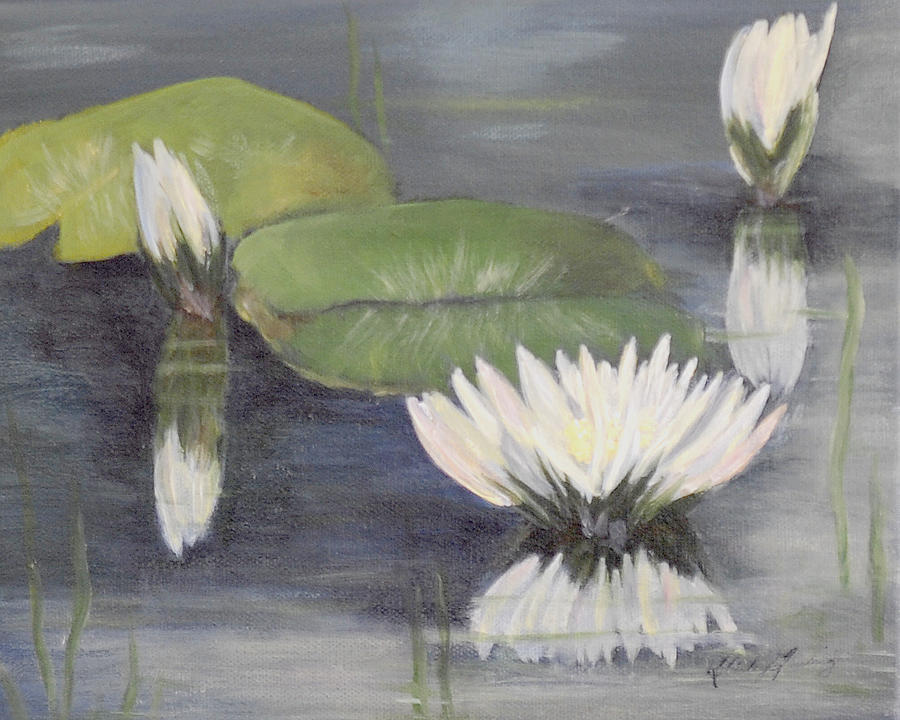 Water Lillies Painting by Shirley Lawing