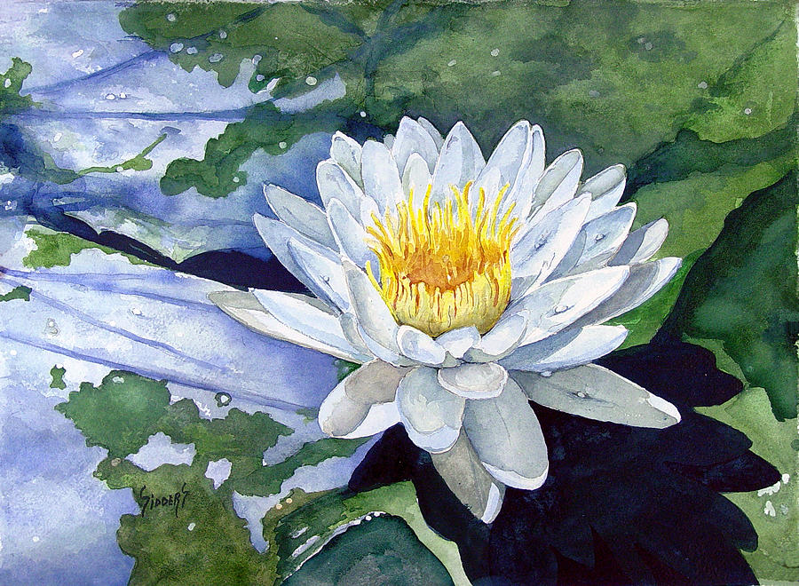 Flower Painting - Water Lily by Sam Sidders