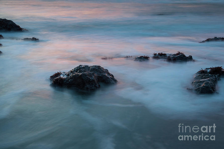Water Music by Mark Alder
