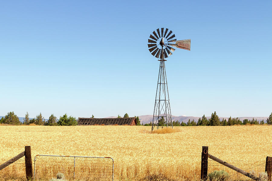 Windmill Photograph - Water Pump Windmill At Wheat Farm In Rural Oregon by David Gn