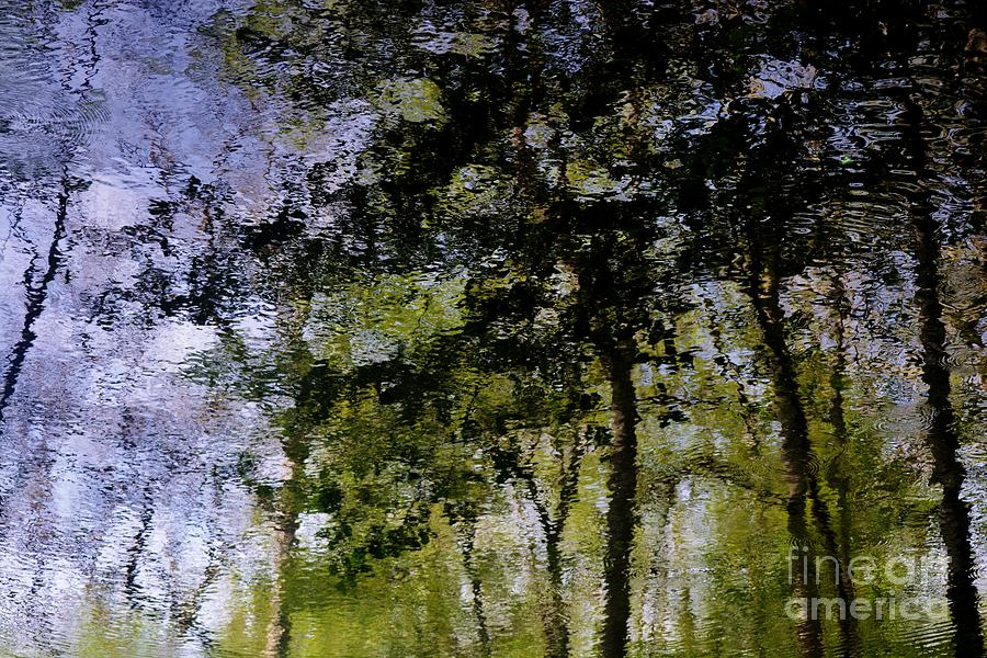 Water Reflections Photograph - Water Reflections 1 by Virginia Levasseur