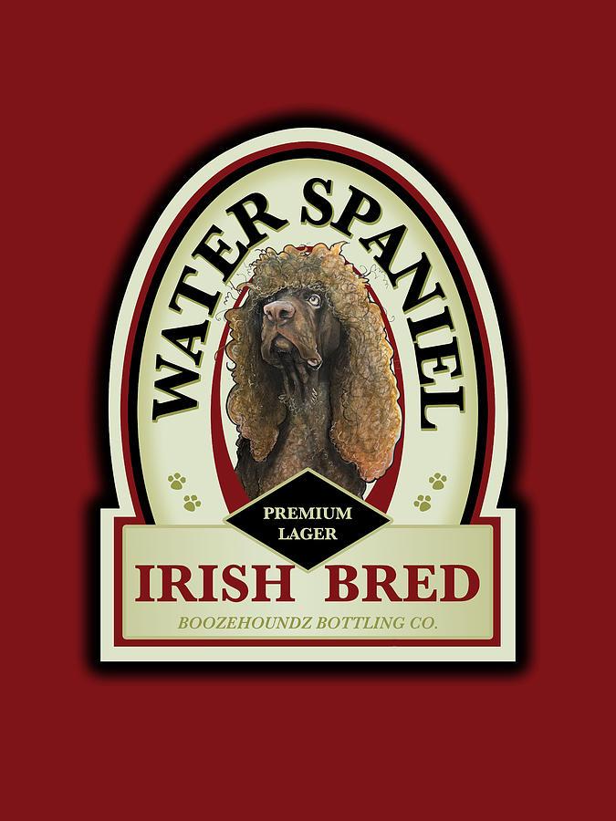Water Spaniel Irish Bred Premium Lager Drawing