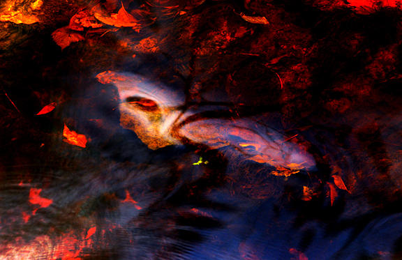 Water Spirit 3 Photograph by Joanne Baldaia