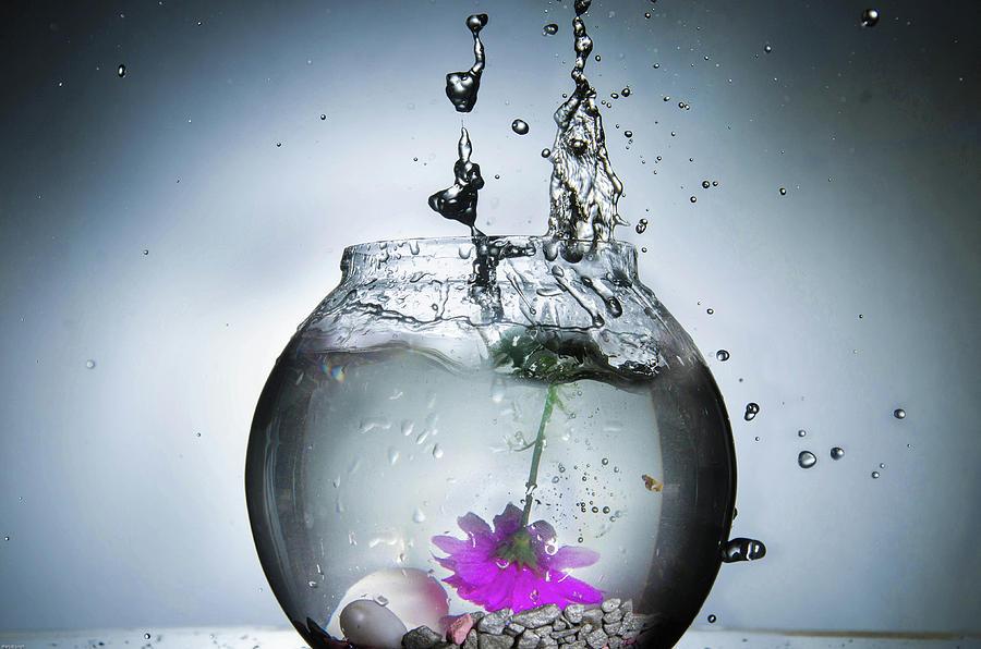 Water Photograph - Water Splash  by Manjot Singh Sachdeva