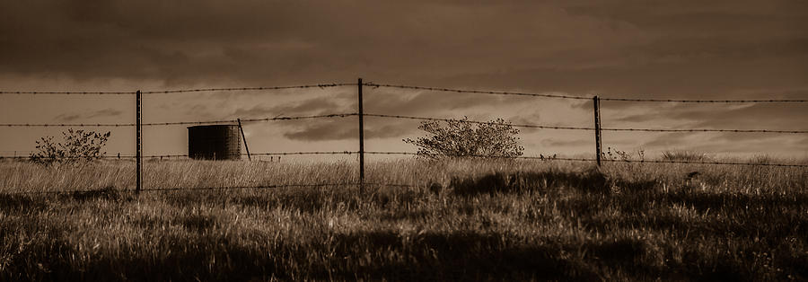 Water Tank Photograph - Water Tank On The Pasture  by Craig Watanabe