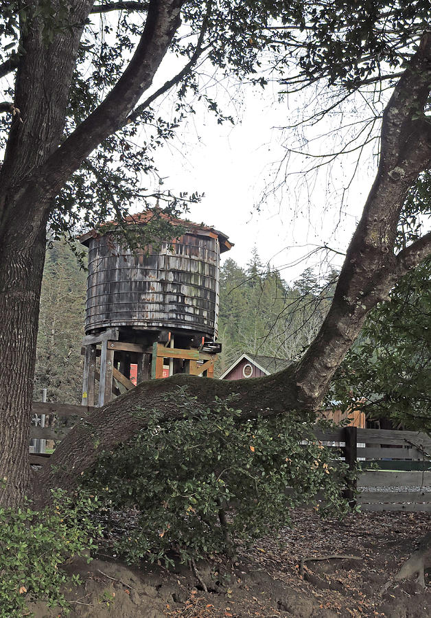 Water Tower @ Roaring Camp Photograph