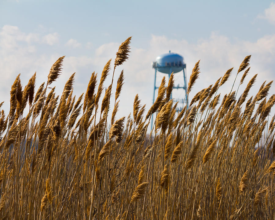 Water Tower Photograph - Water Tower by Kirkodd Photography Of New England