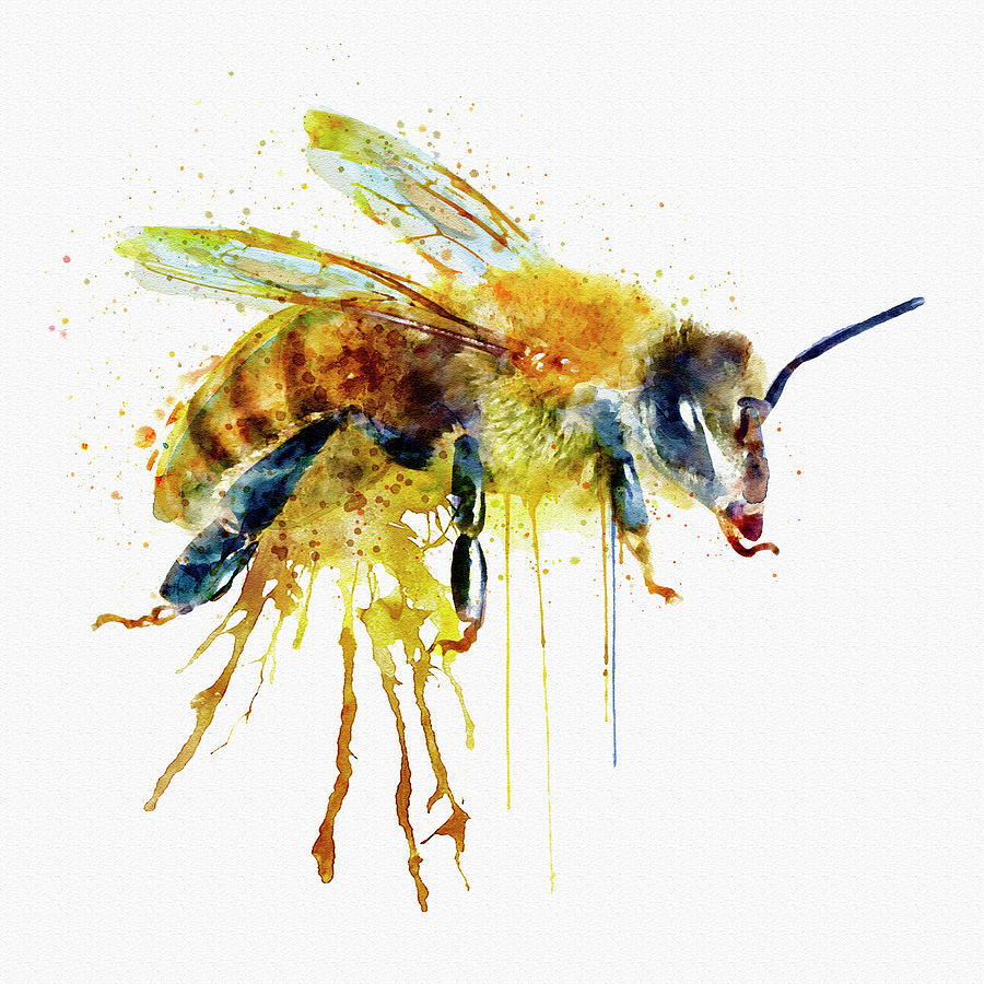 Watercolor Bee Mixed Media By Marian Voicu