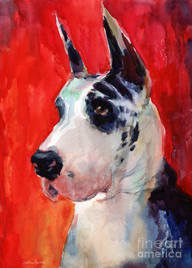Watercolor Harlequin Great Dane Dog Portrait 2  by Svetlana Novikova