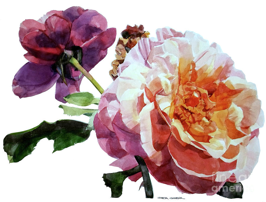 Watercolor Of Two Roses In Pink And Violet On One Stem That  I Dedicate To Jacques Brel Painting
