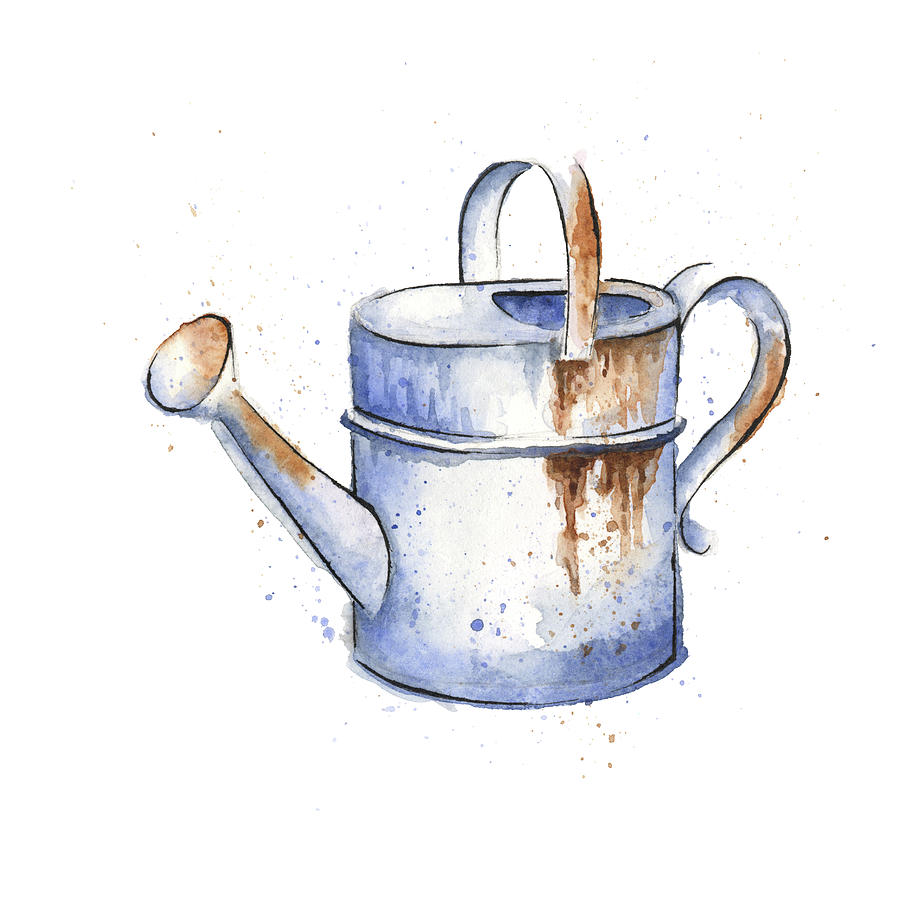 watercolor painting of a rusty watering can spring painting by