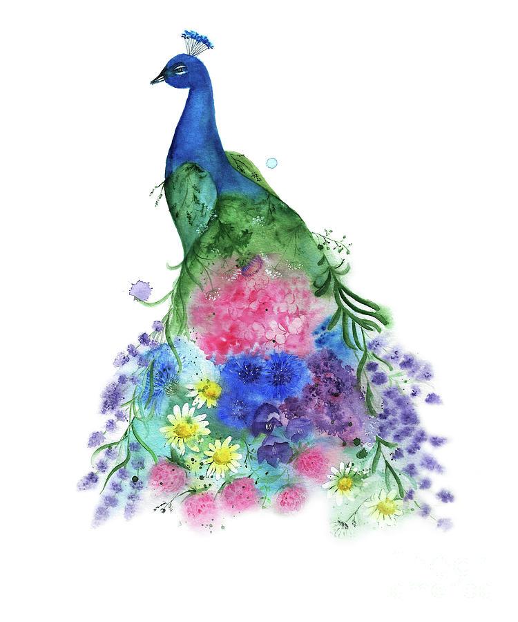 Watercolor Peacock by Liliya Suleymanova