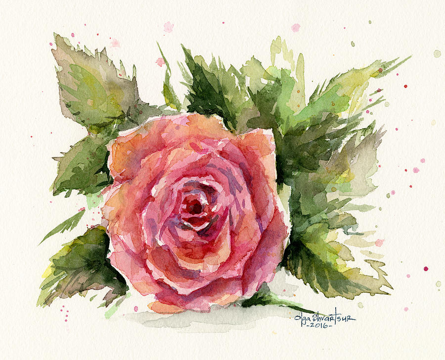 Watercolor Rose Painting By Olga Shvartsur