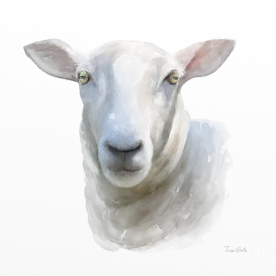 Sheep Painting - Watercolor Sheep by Ivana Westin