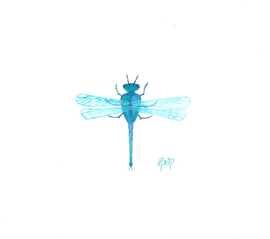 Sketch Painting - Watercolor Sketch Dragonfly by Robert Meszaros