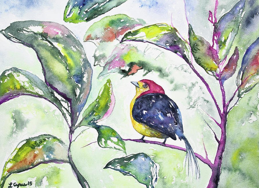 Bird Painting - Watercolor - Wire-tailed Manakin In The Rainforest by Cascade Colors