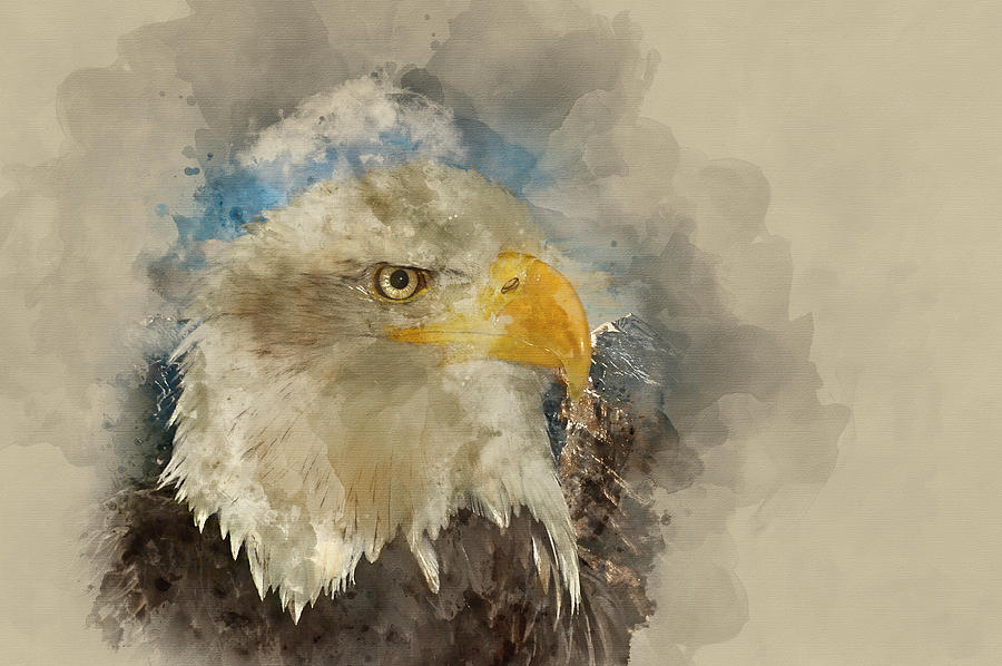 Watercolour Painting Of American Symbol Of Hope Bald Eagle Against