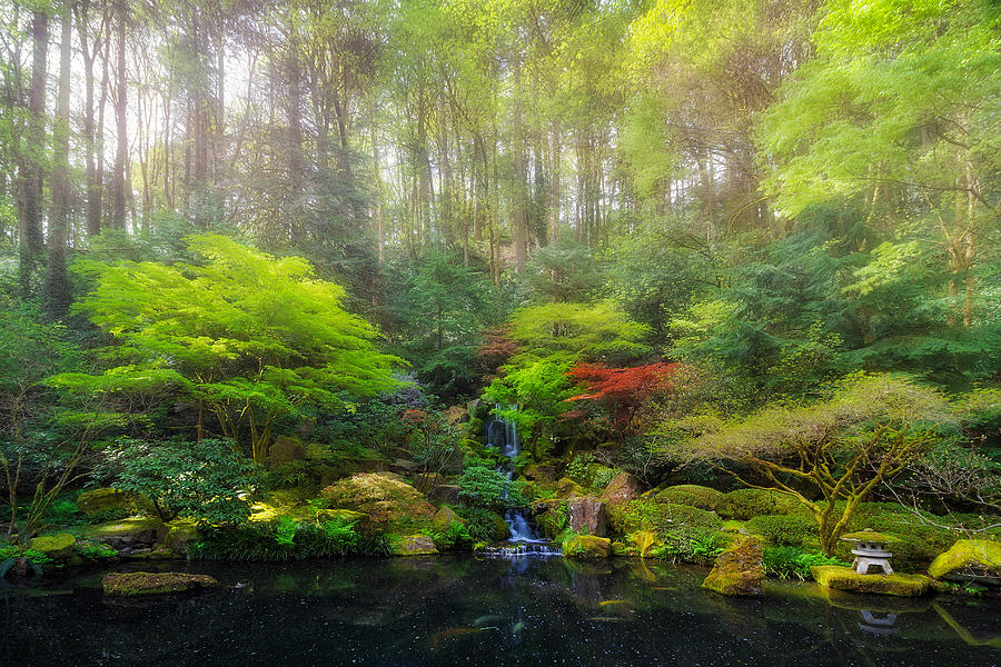 Lower Photograph - Waterfall At Lower Pond In Japanese Garden by David Gn