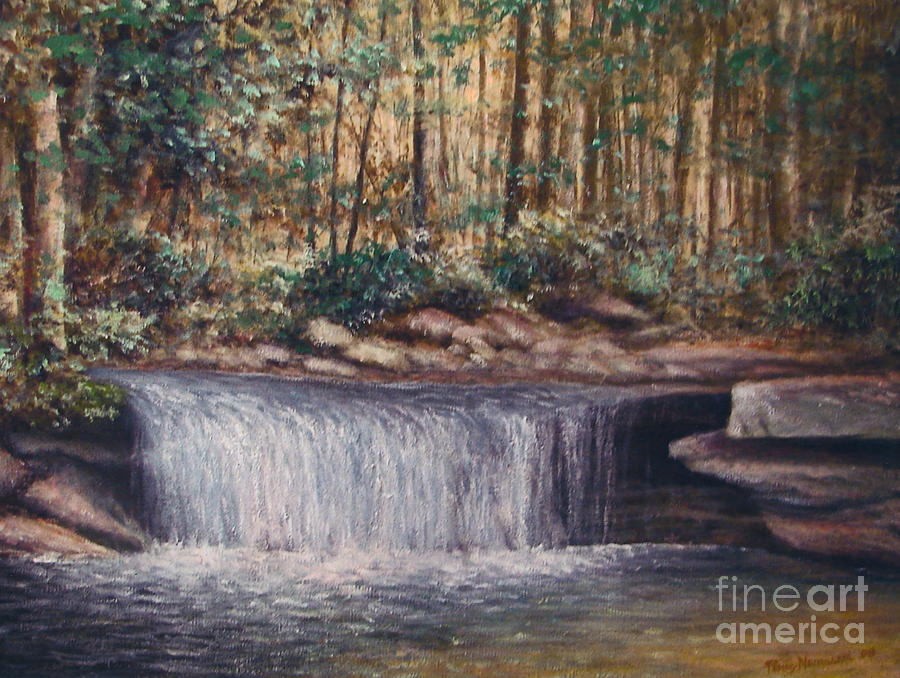Waterfall Glory by Penny Neimiller